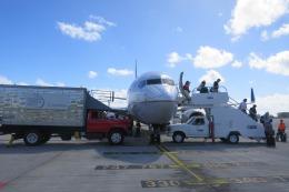 航空フォト:N13716 ユナイテッド航空 737-700