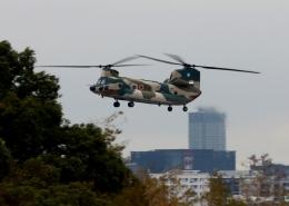 ビッグジョンソンさんが、春日基地で撮影した航空自衛隊 CH-47J/LRの航空フォト(飛行機 写真・画像)