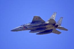 AWACSさんが、茨城空港で撮影した航空自衛隊 F-15DJ Eagleの航空フォト(飛行機 写真・画像)