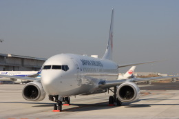 Hi.KOKIさんが、羽田空港で撮影した日本航空 737-846の航空フォト(飛行機 写真・画像)