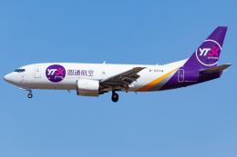 KoshiTomoさんが、成田国際空港で撮影したYTOカーゴ・エアラインズ 737-37K(SF)の航空フォト(飛行機 写真・画像)