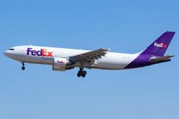 KoshiTomoさんが、成田国際空港で撮影したフェデックス・エクスプレス A300F4-605Rの航空フォト(飛行機 写真・画像)