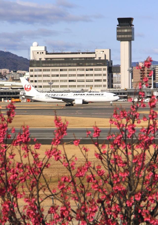 LOTUSさんが、伊丹空港で撮影した日本航空 767-346/ERの航空フォト(飛行機 写真・画像)