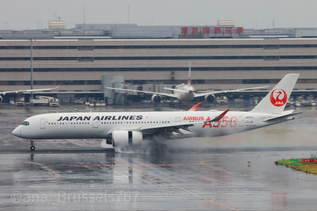 Hi.KOKIさんが、羽田空港で撮影した日本航空 A350-941の航空フォト(飛行機 写真・画像)