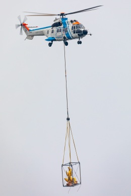 T spotterさんが、名古屋飛行場で撮影した中日本航空 AS332L1 Super Pumaの航空フォト(飛行機 写真・画像)