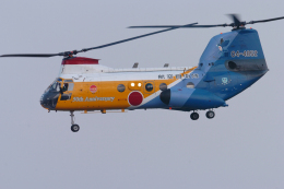 senyoさんが、入間飛行場で撮影した航空自衛隊 KV-107IIA-5の航空フォト(飛行機 写真・画像)