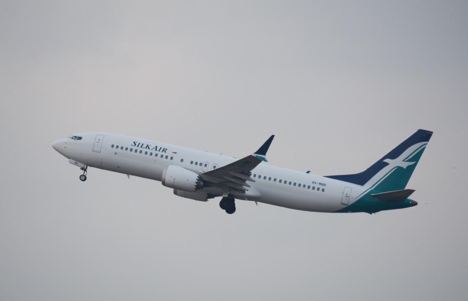 tamtam3839さんのシルクエア Boeing 737 MAX 8 (9V-MBB) 航空フォト