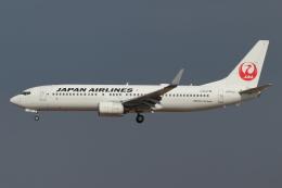 kunimi5007さんが、仙台空港で撮影した日本航空 737-846の航空フォト(飛行機 写真・画像)