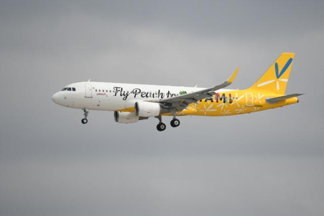シュウさんが、成田国際空港で撮影したピーチ A320-214の航空フォト(飛行機 写真・画像)