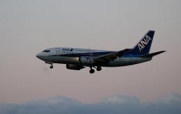 TAKAHIDEさんが、新潟空港で撮影したANAウイングス 737-5L9の航空フォト(飛行機 写真・画像)