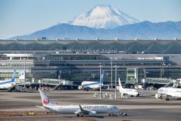 航空フォト:JA318J 日本航空 737-800