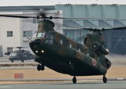 ビッグジョンソンさんが、高遊原分屯地で撮影した陸上自衛隊 CH-47JAの航空フォト(飛行機 写真・画像)