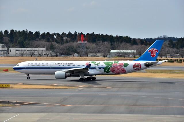 ちかぼーさんが、成田国際空港で撮影した中国南方航空 A330-323Xの航空フォト(飛行機 写真・画像)