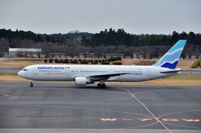 ちかぼーさんが、成田国際空港で撮影したユーロアトランティック・エアウェイズ 767-34P/ERの航空フォト(飛行機 写真・画像)