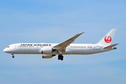 ちっとろむさんが、フランクフルト国際空港で撮影した日本航空 787-9の航空フォト(飛行機 写真・画像)
