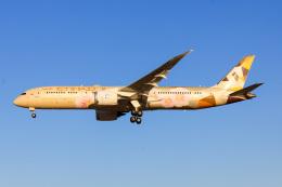 かっちゃん✈︎さんが、成田国際空港で撮影したエティハド航空 787-9の航空フォト(飛行機 写真・画像)