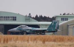 木人さんが、茨城空港で撮影した航空自衛隊 F-15DJ Eagleの航空フォト(飛行機 写真・画像)