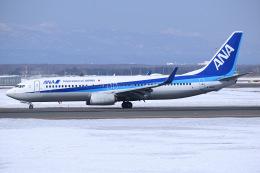 航空フォト:JA76AN 全日空 737-800