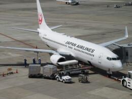 航空フォト:JA308J 日本航空 737-800