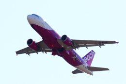 khideさんが、関西国際空港で撮影したピーチ A320-214の航空フォト(飛行機 写真・画像)