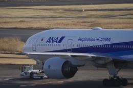 Battleshipさんが、羽田空港で撮影した全日空 777-281の航空フォト(飛行機 写真・画像)