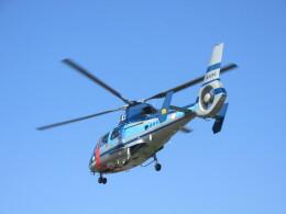 チダ.ニックさんが、静岡ヘリポートで撮影した静岡県警察 AS365N1 Dauphin 2の航空フォト(飛行機 写真・画像)