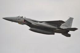 デルタおA330さんが、名古屋飛行場で撮影した航空自衛隊 F-15J Eagleの航空フォト(飛行機 写真・画像)