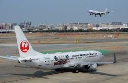 h_wajyaさんが、福岡空港で撮影した日本トランスオーシャン航空 737-8Q3の航空フォト(飛行機 写真・画像)