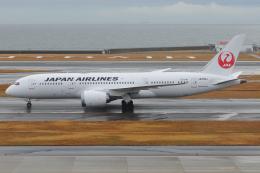 きんめいさんが、中部国際空港で撮影した日本航空 787-8 Dreamlinerの航空フォト(飛行機 写真・画像)