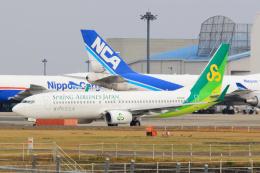 inyoさんが、成田国際空港で撮影した春秋航空日本 737-86Nの航空フォト(飛行機 写真・画像)