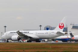 inyoさんが、成田国際空港で撮影した日本航空 787-8 Dreamlinerの航空フォト(飛行機 写真・画像)