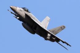 tg36aさんが、横田基地で撮影したアメリカ海軍 F/A-18E Super Hornetの航空フォト(飛行機 写真・画像)