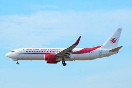 ちっとろむさんが、フランクフルト国際空港で撮影したアルジェリア航空 737-8D6の航空フォト(飛行機 写真・画像)