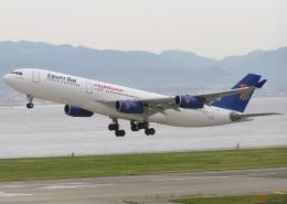 キイロイトリさんが、関西国際空港で撮影したエジプト航空 A340-212の航空フォト(飛行機 写真・画像)