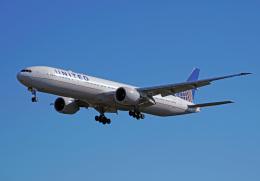 ちゃぽんさんが、成田国際空港で撮影したユナイテッド航空 777-322/ERの航空フォト(飛行機 写真・画像)