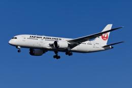 航空フォト:JA839J 日本航空 787-8 Dreamliner