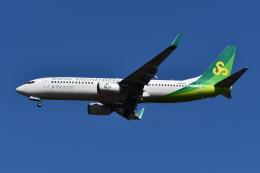 Deepさんが、成田国際空港で撮影した春秋航空日本 737-8ALの航空フォト(飛行機 写真・画像)