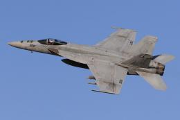 たまさんが、横田基地で撮影したアメリカ海軍 F/A-18E Super Hornetの航空フォト(飛行機 写真・画像)