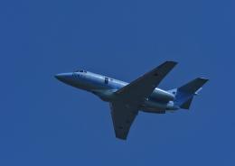 違いがわかる男さんが、防府北基地で撮影した航空自衛隊 U-125A(Hawker 800)の航空フォト(飛行機 写真・画像)