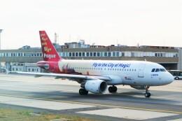 ちっとろむさんが、フランクフルト国際空港で撮影したチェコ航空 A319-112の航空フォト(飛行機 写真・画像)