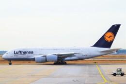 ちっとろむさんが、フランクフルト国際空港で撮影したルフトハンザドイツ航空 A380-841の航空フォト(飛行機 写真・画像)