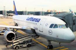 ちっとろむさんが、フランクフルト国際空港で撮影したルフトハンザドイツ航空 A319-114の航空フォト(飛行機 写真・画像)