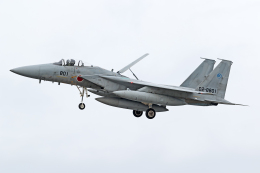 Echo-Kiloさんが、岐阜基地で撮影した航空自衛隊 F-15J Eagleの航空フォト(飛行機 写真・画像)