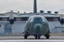かとそさんが、入間飛行場で撮影した航空自衛隊 C-130H Herculesの航空フォト(飛行機 写真・画像)