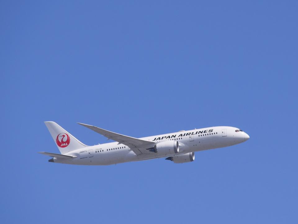 bachi51さんの日本航空 Boeing 787-8 Dreamliner (JA847J) 航空フォト
