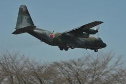 ヨッちゃんさんが、入間飛行場で撮影した航空自衛隊 C-130H Herculesの航空フォト(飛行機 写真・画像)