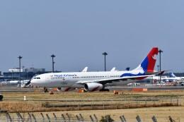 おかめさんが、成田国際空港で撮影したネパール航空 A330-243の航空フォト(飛行機 写真・画像)