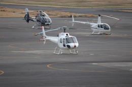 flyflygoさんが、岡南飛行場で撮影した日本個人所有 AS350B Ecureuilの航空フォト(飛行機 写真・画像)