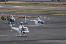 flyflygoさんが、岡南飛行場で撮影した日本法人所有 R44 Ravenの航空フォト(飛行機 写真・画像)
