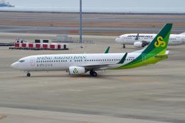 yabyanさんが、中部国際空港で撮影した春秋航空日本 737-8ALの航空フォト(飛行機 写真・画像)